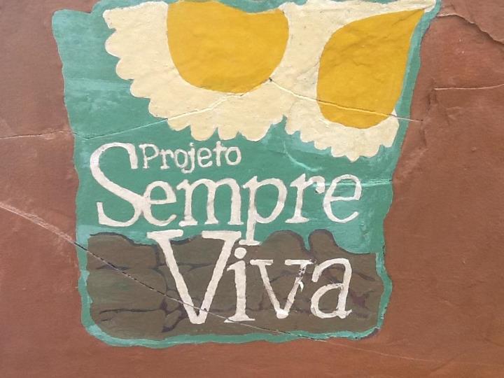 Inscrições para o projeto Sempre Viva iniciam na próxima semana