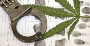 Palavra-Livre-drogas-descriminalizacao-stf