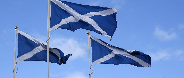 Escócia proíbe cultivo de produtos geneticamente modificados