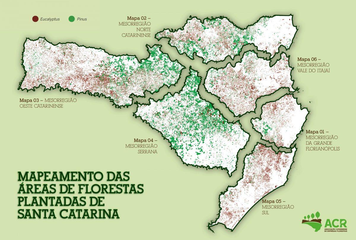 Estudo aponta áreas de silvicultura em SC
