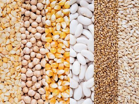 Boletim Agropecuário mostra alta de preços de grãos e exportações de carnes em SC