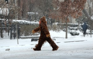 Winter Storm Brings More Snow To DC Area