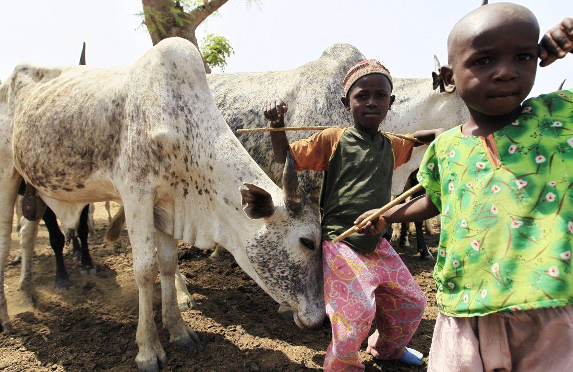 Ataques do Boko Haram levam 500 mil crianças a deixar suas casas na África