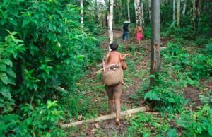 PalavraLivre-terras-indigenas