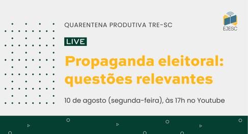 TRE/SC promove encontro virtual sobre propaganda eleitoral na segunda-feira (10/8)