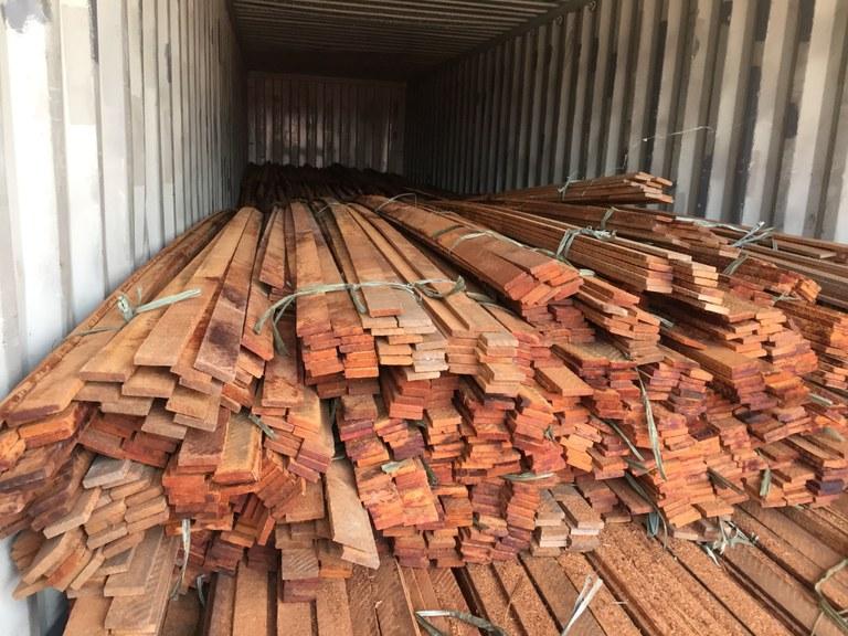 Operação Okê Arô desarticula esquema de extração ilegal de madeira na Amazônia